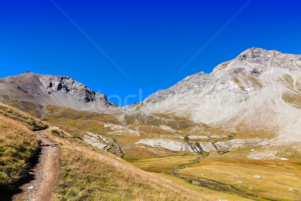 Footpath in the Mountains Stock photo © RazvanPhotography