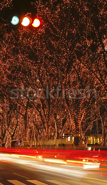 Sendai December illumination festival 2 Stock photo © RazvanPhotography