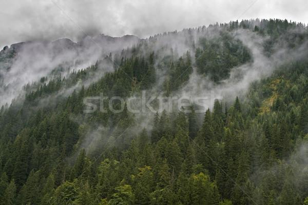Szeszélyes időjárás lenyűgöző nyár felhők emelkedő Stock fotó © RazvanPhotography