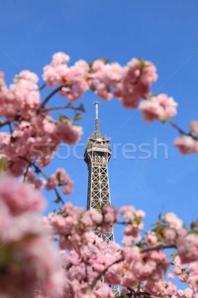 Párizsi részlet felső Eiffel turné ágak Stock fotó © RazvanPhotography
