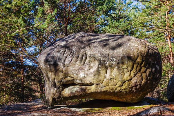 Rock in Fontainebleau Forest Stock photo © RazvanPhotography