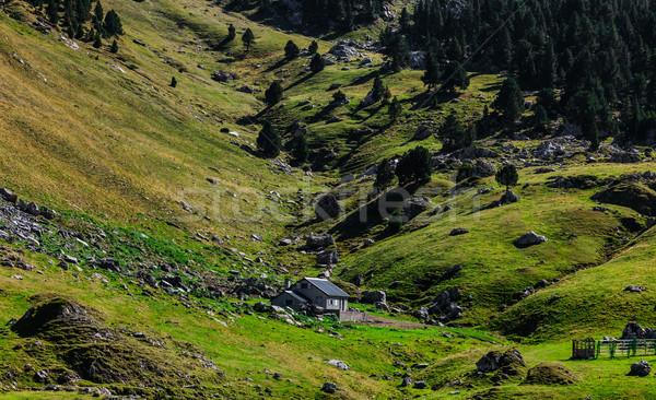 Mountainous Valley Stock photo © RazvanPhotography