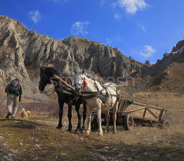 Hiking Stock photo © RazvanPhotography