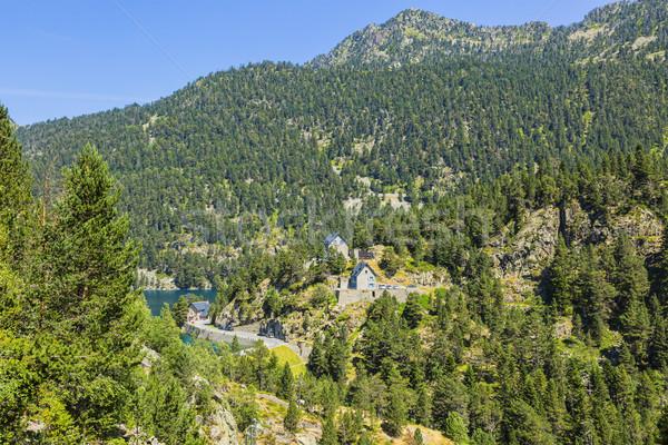 Verde montanas hermosa frescos forestales árbol Foto stock © RazvanPhotography