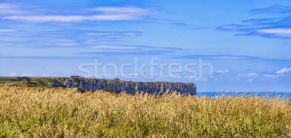 Landscape on the Normandy Coast Stock photo © RazvanPhotography