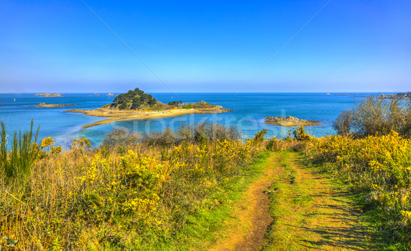 Sterec Island - Brittany, France Stock photo © RazvanPhotography