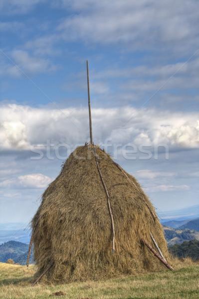 Stockfoto: Bergen · regio · humeurig · wolken · voedsel · veld