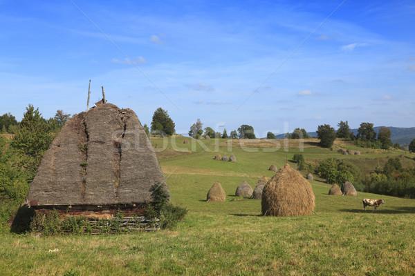 Stock photo: Trnaylvanian landscape
