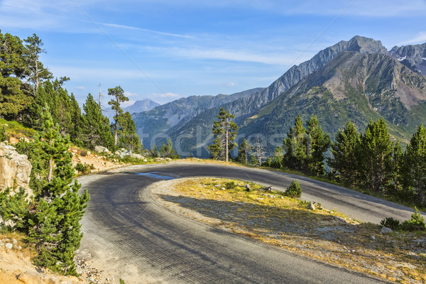 Hairpin Curve on a Scenic Road Stock photo © RazvanPhotography