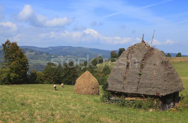 Transylvanian Landscape Stock photo © RazvanPhotography