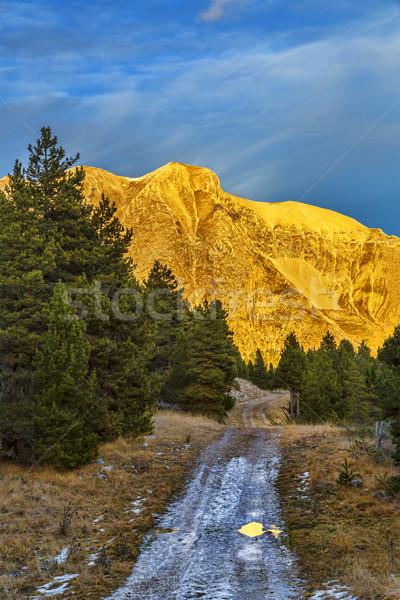 Foto stock: Puesta · de · sol · montana · camino · hermosa · forestales · invierno