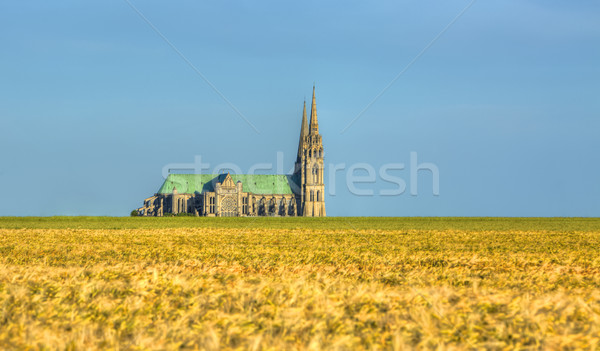 Cathedral of Our Lady of Chartres Stock photo © RazvanPhotography