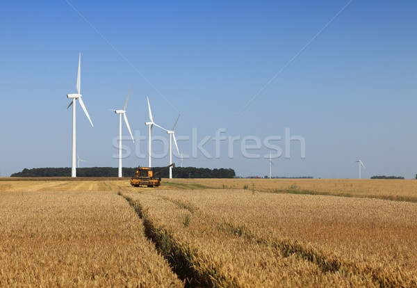 Agriculture and energy Stock photo © RazvanPhotography