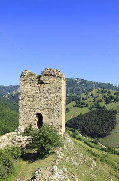 Coltesti fortress Stock photo © RazvanPhotography