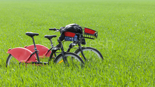 Urban Bicycles in a Green Field Stock photo © RazvanPhotography