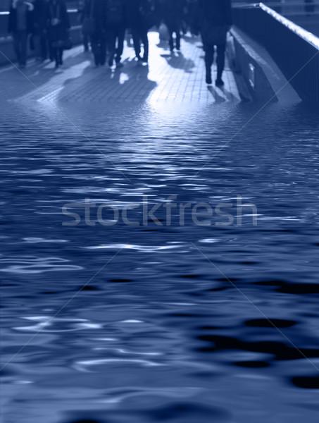 The amphibians-blue Stock photo © RazvanPhotography