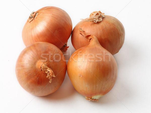 allium cepa onion skin anthurium andreanum