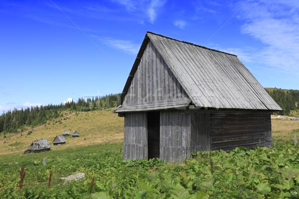 Traditioneel houten roemeense huis oude kan Stockfoto © RazvanPhotography