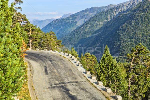 Scenic Road Stock photo © RazvanPhotography