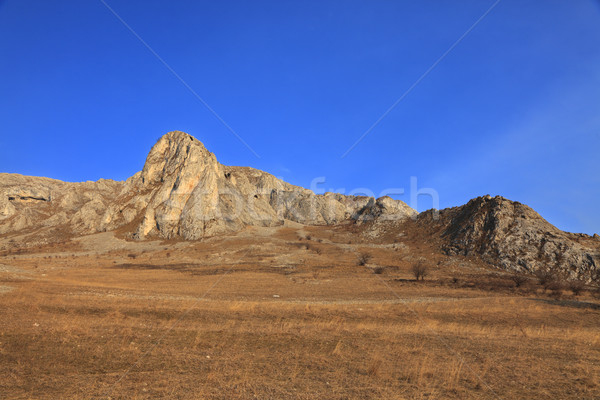 Landschap vroeg voorjaar seizoen schoonheid reizen Stockfoto © RazvanPhotography