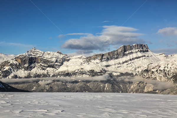 Alpine Crest in Winter Stock photo © RazvanPhotography