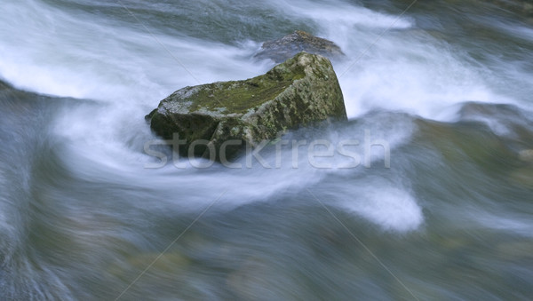 Water torrent Stock photo © RazvanPhotography