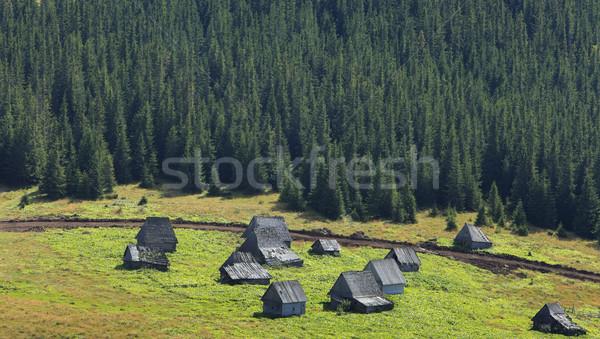 Traditioneel berg dorp afbeelding huizen hout Stockfoto © RazvanPhotography