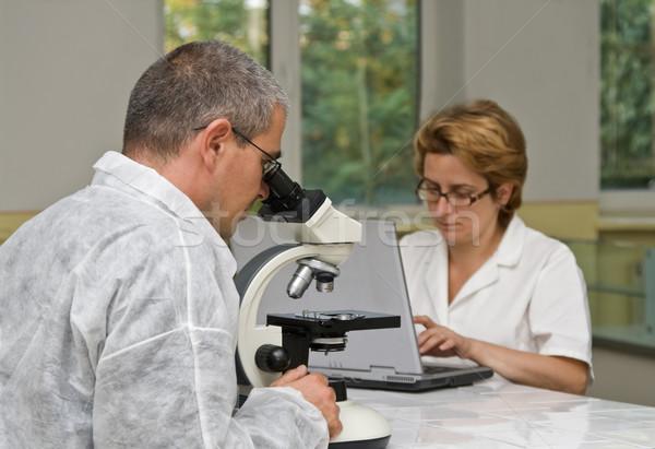 Foto stock: Dois · microscópio · homem · casal · educação