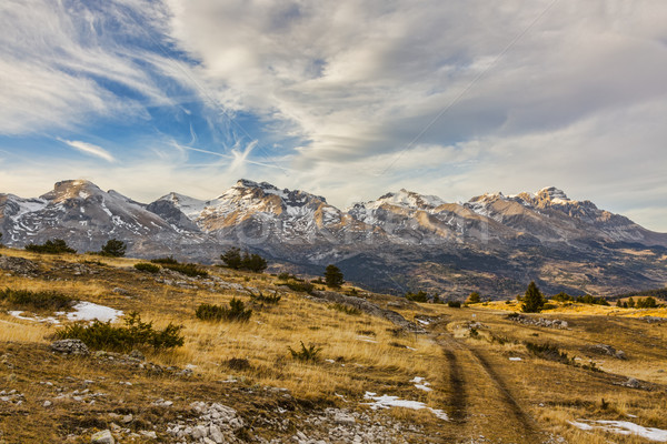 Mountain Without Snow in Winter Stock photo © RazvanPhotography