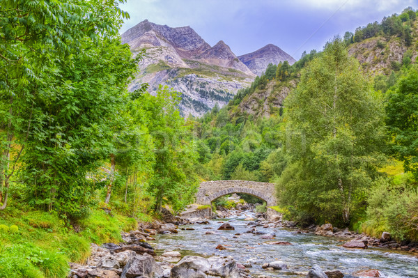 The River Gave de Gavarnie Stock photo © RazvanPhotography