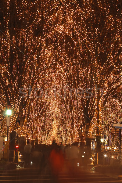 Sendai December illumination festival Stock photo © RazvanPhotography