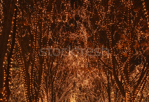 Verlichting abstract gegenereerde christmas show textuur Stockfoto © RazvanPhotography