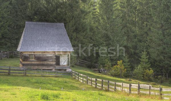традиционный румынский дома регион стране домой Сток-фото © RazvanPhotography