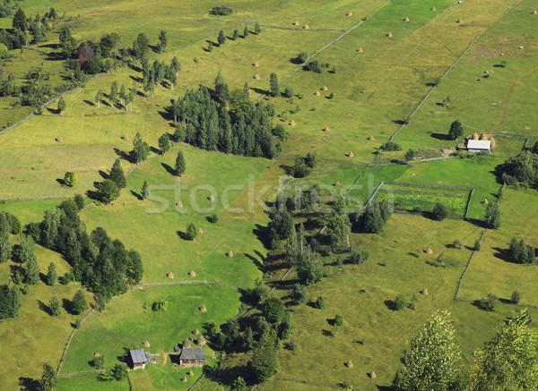 Rural pattern Stock photo © RazvanPhotography