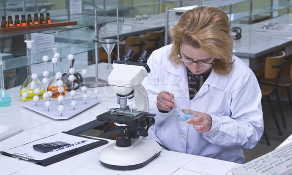 Research work Stock photo © RazvanPhotography
