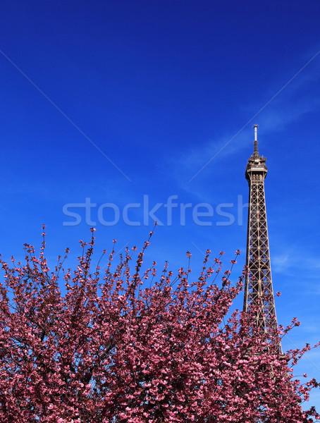 Párizsi tavasz kép híres Eiffel-torony fölött Stock fotó © RazvanPhotography