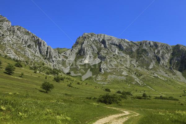 Trascau Mountains,Transylvania,Romania Stock photo © RazvanPhotography