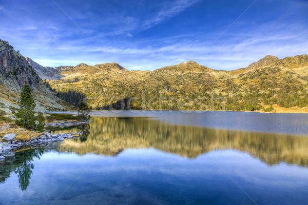 Foto stock: Belo · montanhas · grama · floresta · natureza · fundo