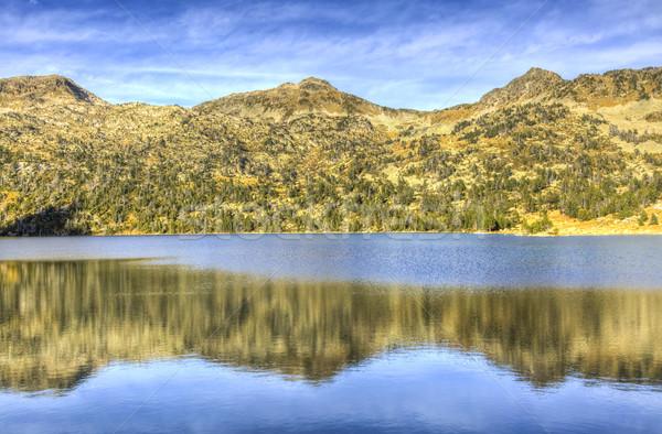 Foto stock: Reflexão · montanhas · grama · floresta · natureza · fundo