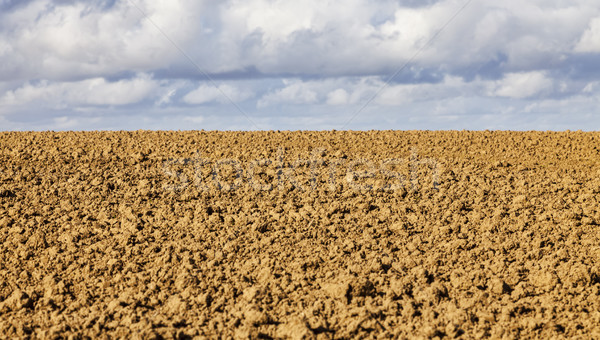 Agricultural Abstract Stock photo © RazvanPhotography