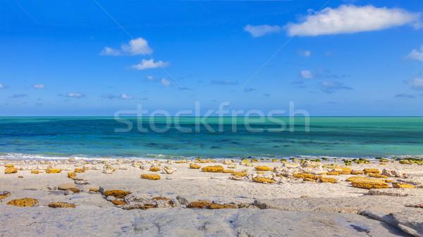 Tengerpart Normandia észak Franciaország felhők tájkép Stock fotó © RazvanPhotography