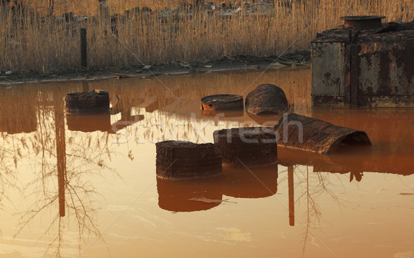 The pond of death Stock photo © RazvanPhotography
