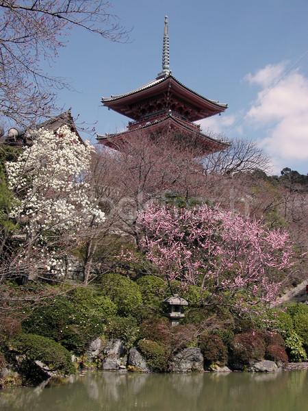 Kyomizudera-early spring Stock photo © RazvanPhotography