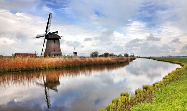Traditional Dutch Windmill Stock photo © RazvanPhotography