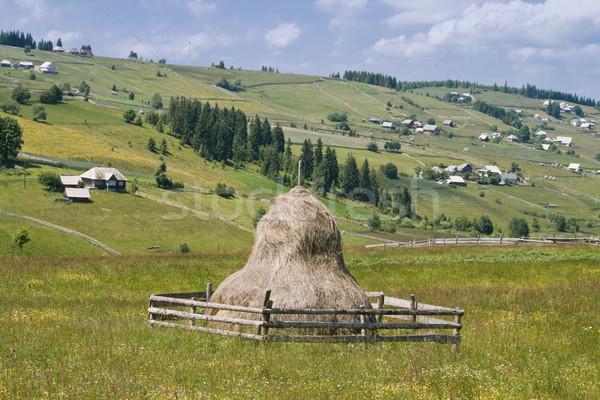 Román hegy falu széna központi első Stock fotó © RazvanPhotography