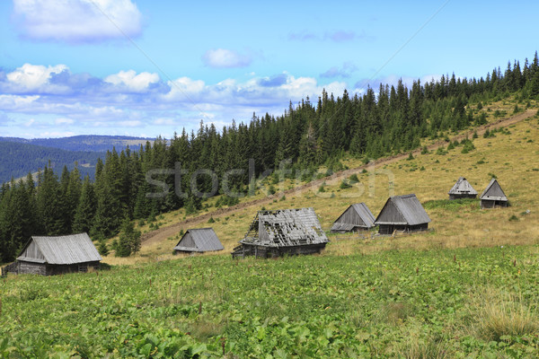 Traditionnel montagne village image maisons bois Photo stock © RazvanPhotography