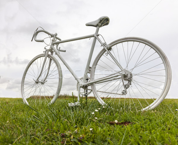 Old White Bicycle in a Field Stock photo © RazvanPhotography