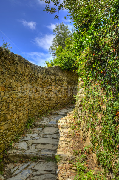 Footpath in Cinque Terre National Park Stock photo © RazvanPhotography