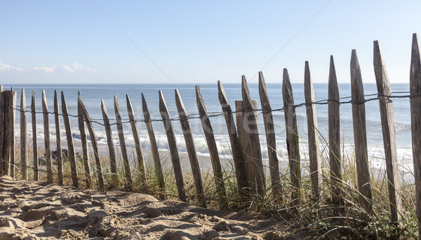 Fence on a Sand Dune Stock photo © RazvanPhotography