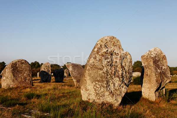 Megalithic Monuments in Carnac Stock photo © RazvanPhotography